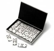 Domino Game with Case