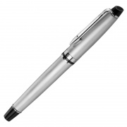 Waterman Expert Stainless Steel Rollerball